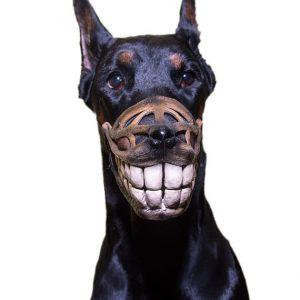 Bozal para perro gracioso y sonriente para disfraz