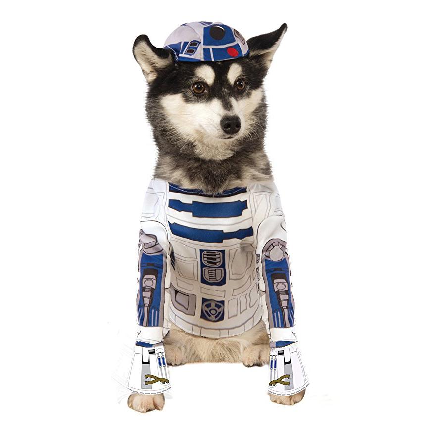 Disfraz de R2-D2 para perro