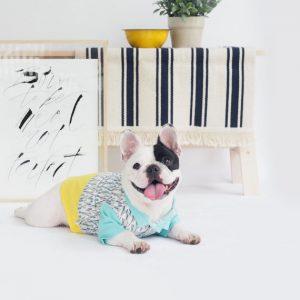 Camisa para perro con motivo de cristales