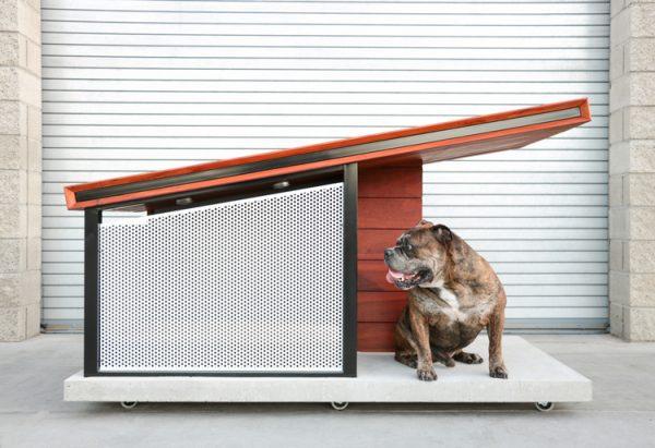 Caseta de diseño para perros MDK9 Dog Haus