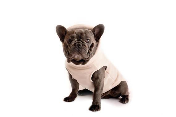 Jersey para Bulldog Francés de polartec