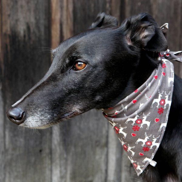 Bandana para perro motivos de renos