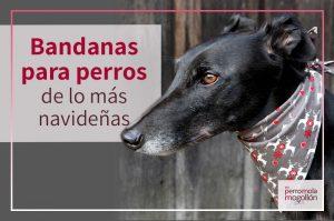 Bandanas navideñas para que tu perro mole estas navidades