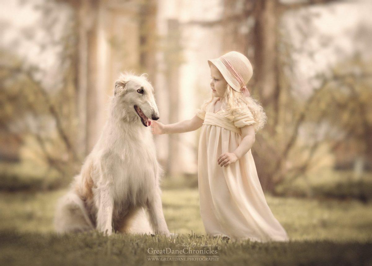 Great Dane Chronicles fotografía de perros y niños