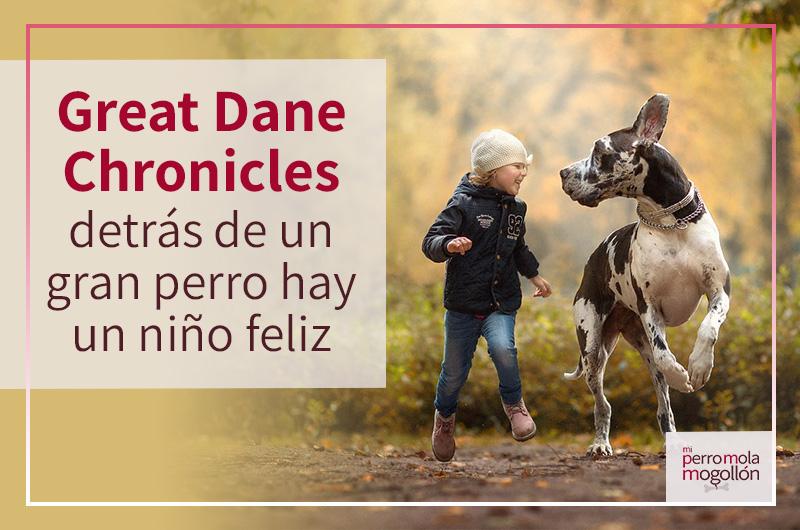 Great Dane Chronicles, detrás de un gran perro hay un niño feliz