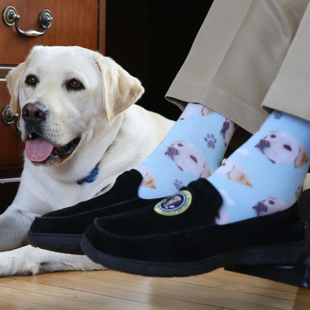 Sully junto a George HW Bush y sus calcetines de labrador
