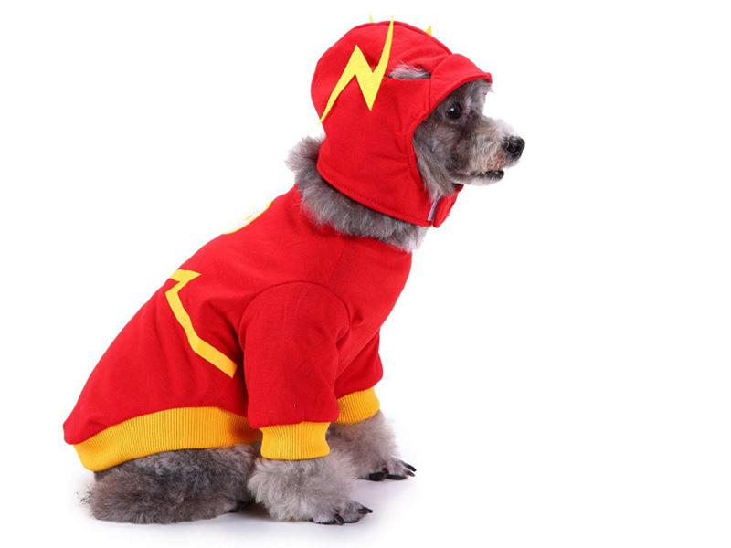 Disfraz para perro de Flash