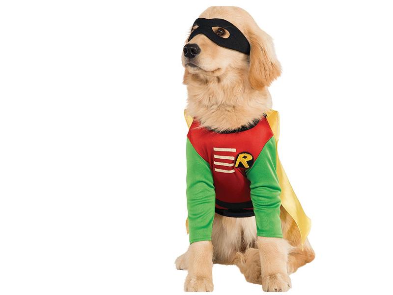 Disfraz para perro de Robin