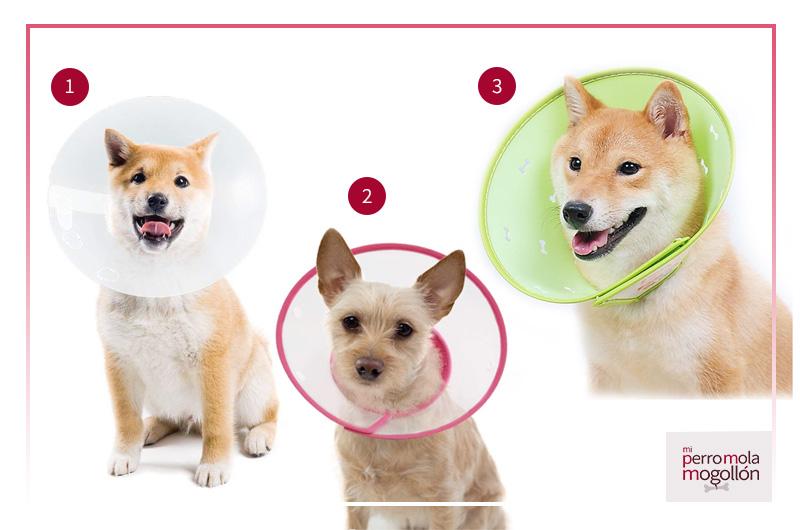 Collar isabelino de plástico para perros