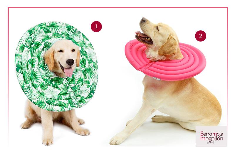 Collar isabelino para perros con forma de platillo volantes