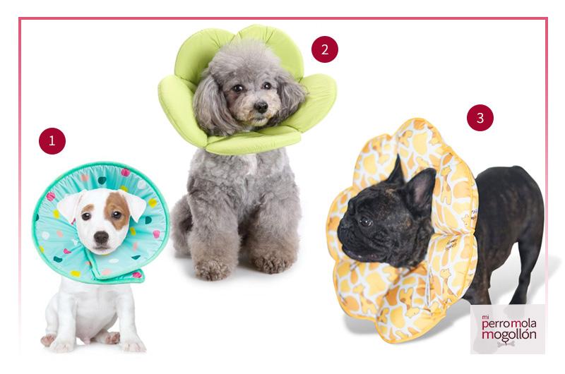 Collar de recuperación acolchado o espuma para perros